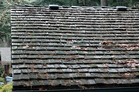 Wood-shingled roof